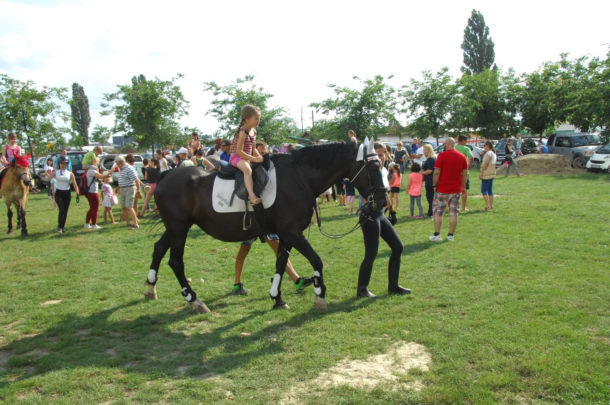 Коњички спорт има најверније поборнике међу децом