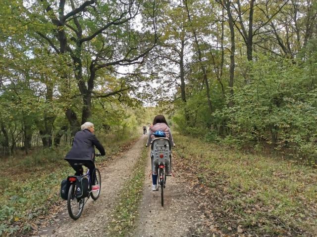 """Бициклисти су се возили шетном стазом """"Штрбац"""" у оквиру Специјалног резервата природе """"Горње подунавље"""""""