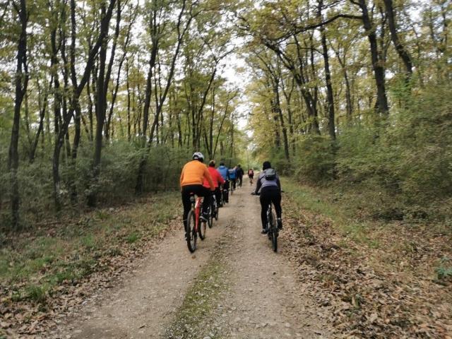 """Вожња у оквиру Међународног бициклистичког фестивала """"Европски Амазон"""""""