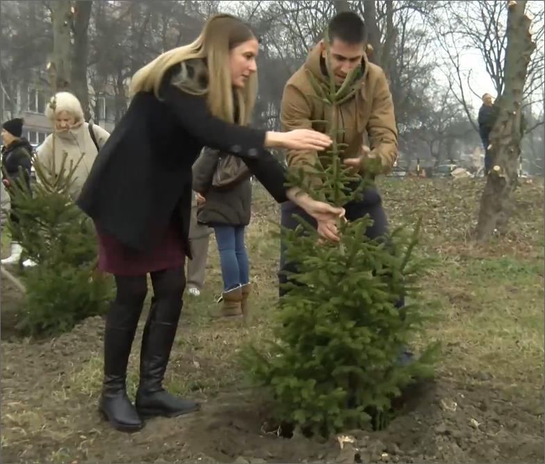 Градоначелница Душанка Голубовић и заменик градоначелнце Антонио Ратковић посадили су своје јелке